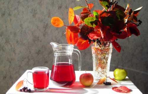 Рецепты компотов из дыни, секреты выбора