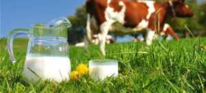 Без кальций и фтор, которым богато молоко, не усваивается в человеческом организме