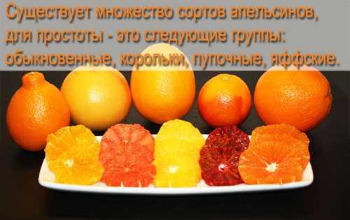 Включает такаядиета семечки, орех, киви, апельсин