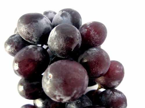 Виноград выбираем мясистый, спелый и без дефектов